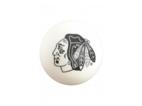 Streethockeyboll - Chicago Blackhawks