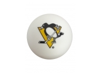 Streethockeyboll - Pittsburgh Penguins